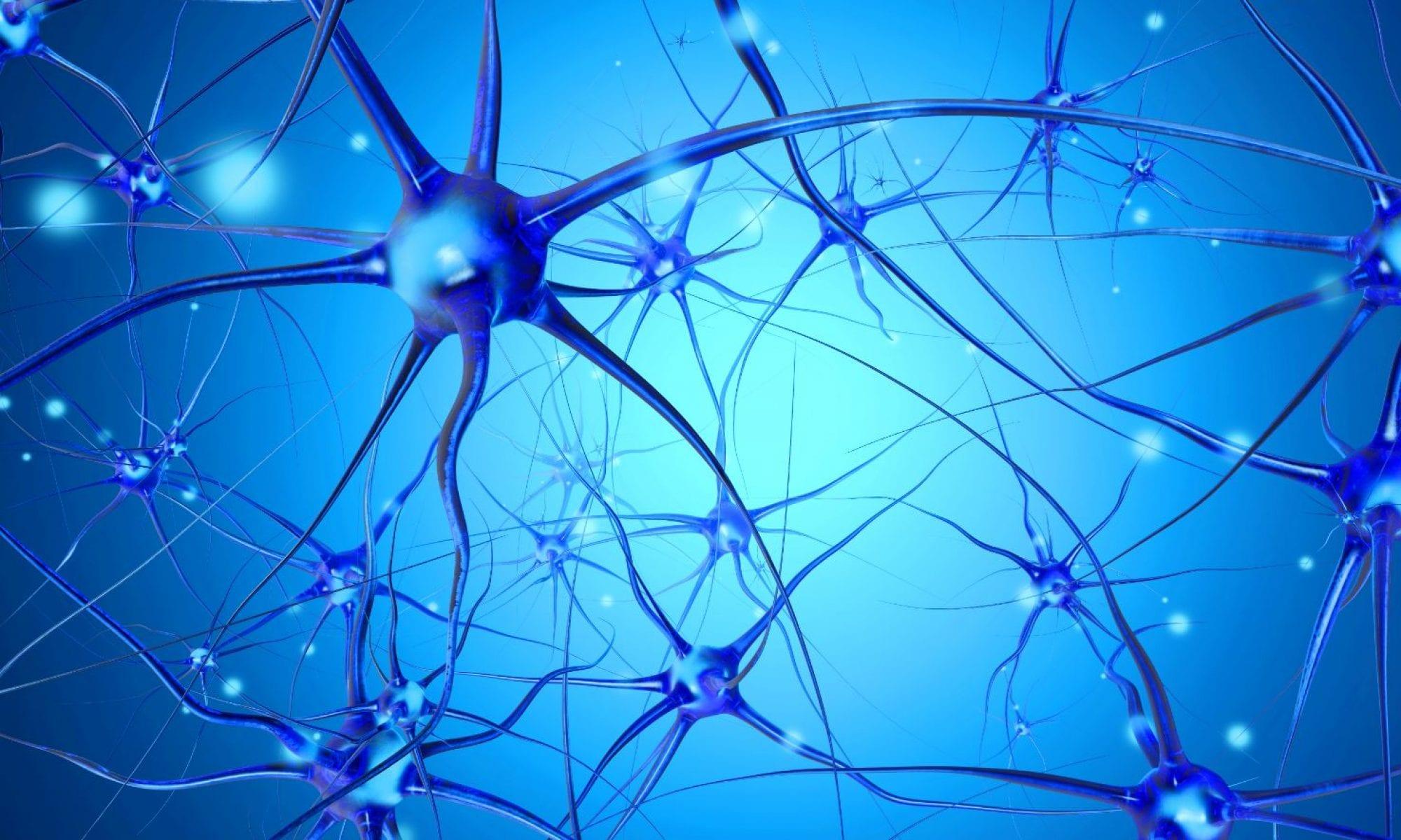 Neuro Daily